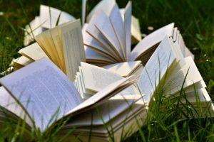La littérature, les auteurs dans l'atelier d'écriture